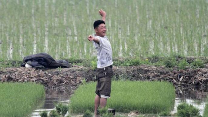 Какъв е животът в Северна Корея