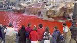 В най-известния фонтан в Италия за година са хвърлени рекорден брой пари...