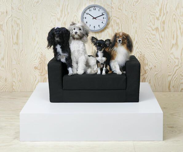IKEA създаде мебели за животни и светът полудя