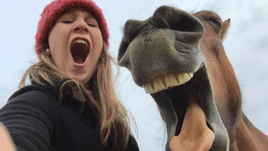 Ето ги финалистите в конкурса за най-смешните снимки на животни