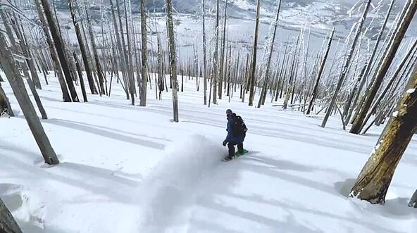 Сноуборд в гората: опасно, но изключително красиво