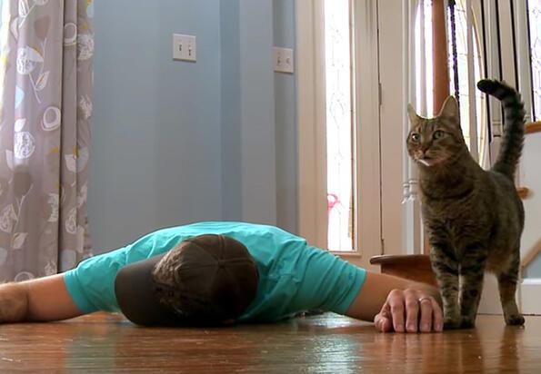 Ето как реагират котките, когато стопанина им умре!