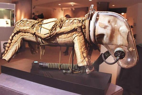 Какви скафандри са носили кучетата Белка и Стрелка в космоса?