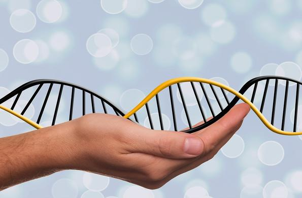 Молекулата на живота и как откритието й промени света