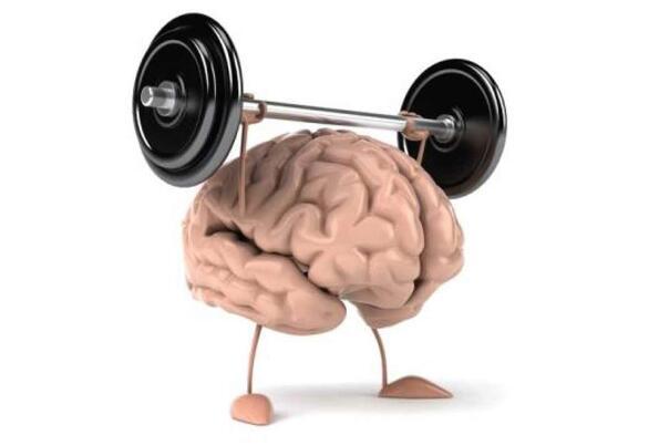 Гориво за мозъка