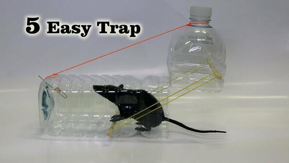 5 прости и безопасни капанa за мишки, които можеш да си направиш сам!