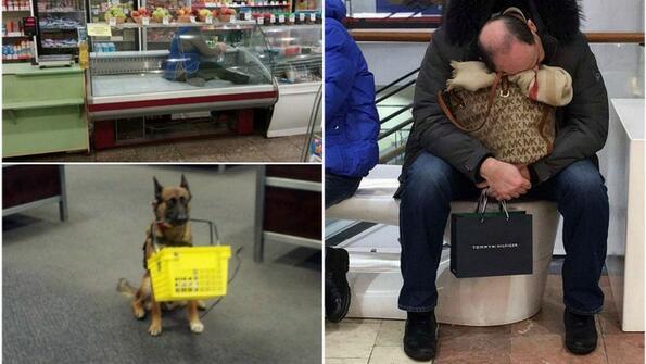 Куриозни ситуации, с които пазаруването се превръща в приключение!