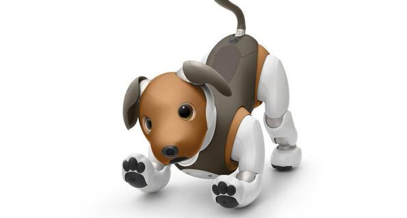 Роботът куче на SONY вече става пазач